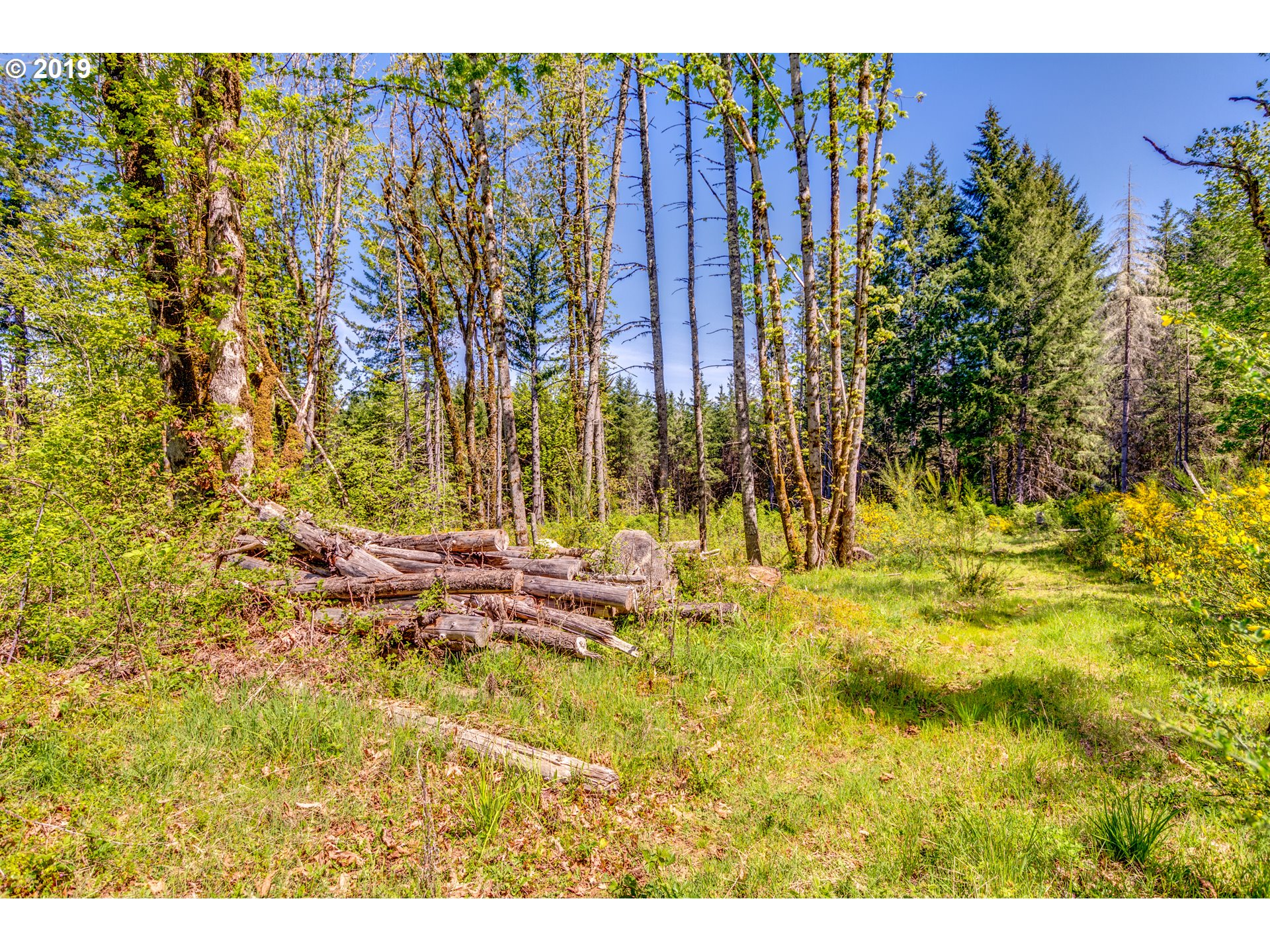 25340 NW TURNER CREEK RD, YAMHILL, OR 97148  Photo 6