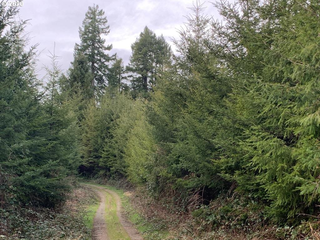 Photo of  Sams Creek