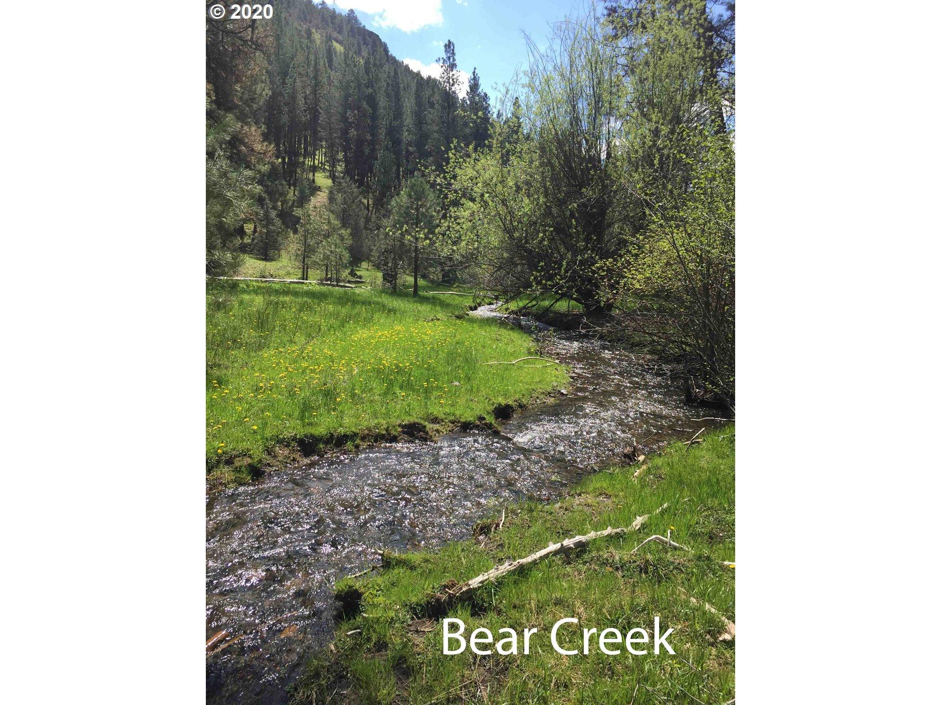 Photo of  Bear Creek Elk