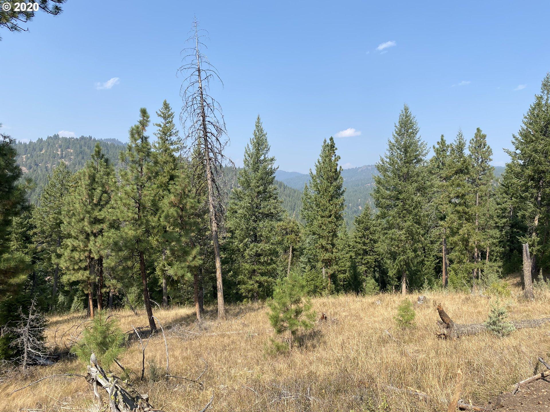 Photo of  Bear Creek Home 278