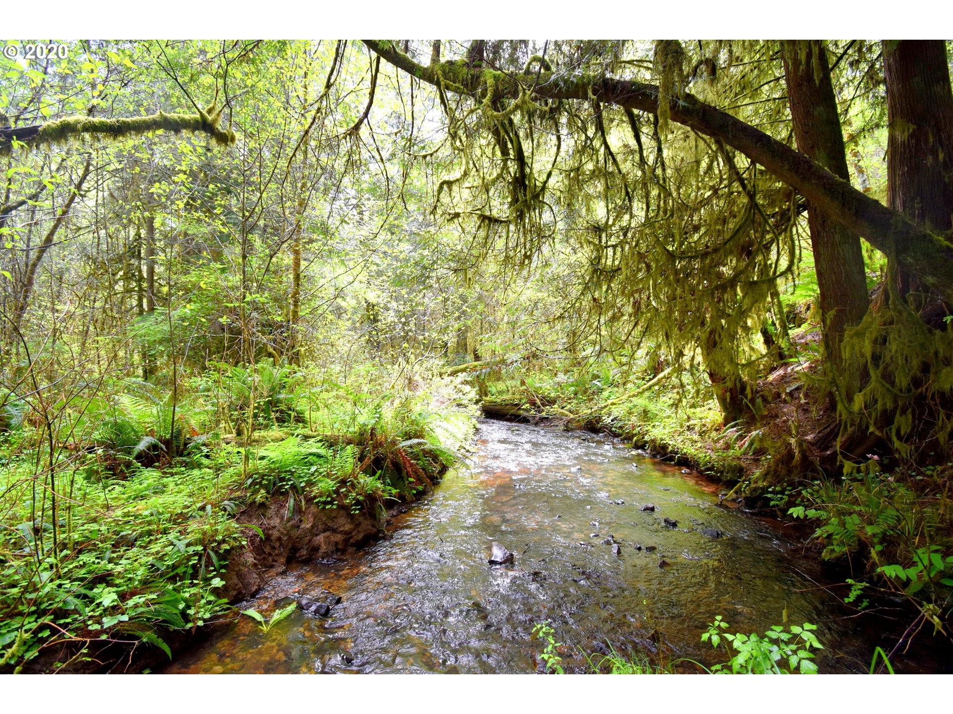 Photo of 0 Slide Creek RD