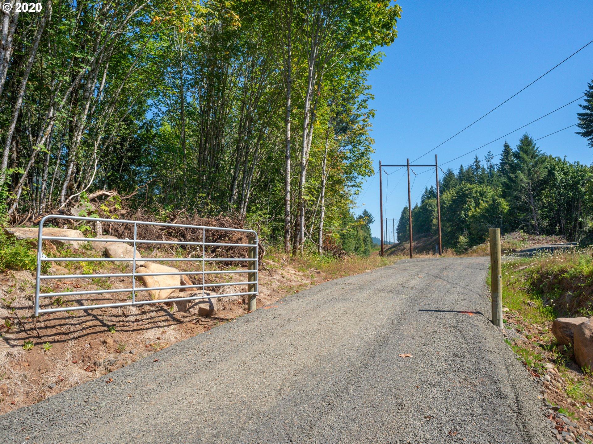 Deerhorn RD 1 (1 of 9)