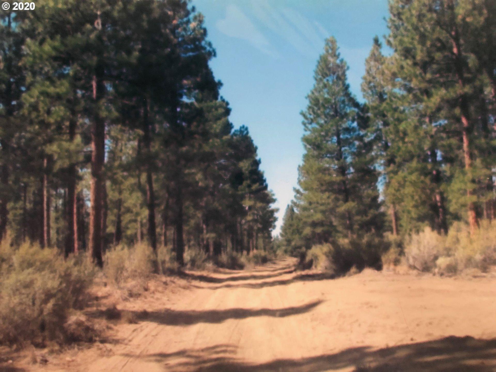 Photo of  Klamath Forest Estat  30/36