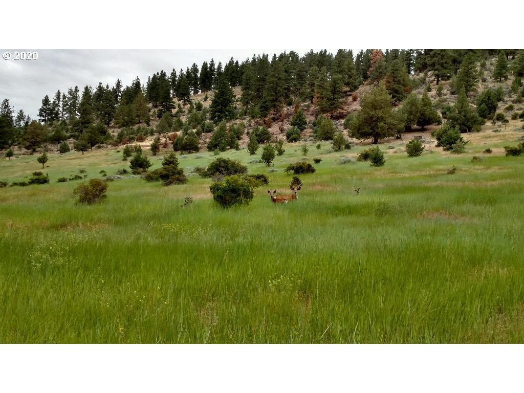 Photo of 0 Buckhorn Estates